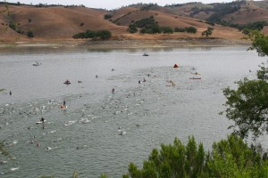 Wildlfower swim course